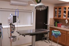 17-virtual-tour-speak-animal-hospital.jpg