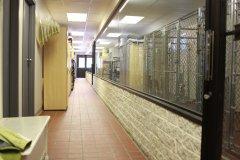 29-virtual-tour-speak-animal-hospital.jpg